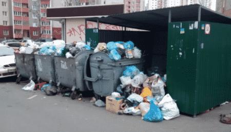 Штраф за выброс мусора в неположенном месте в 2020 году