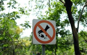 Штраф за выброс мусора в лесу
