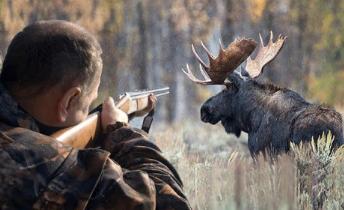 Сущность браконьерства